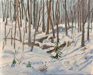 Through the Ravine at Ann's  8 x 10 Oil on Ampersand panel$275 framed.